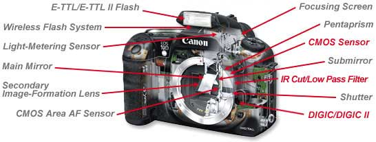 How DSLR Cameras Work